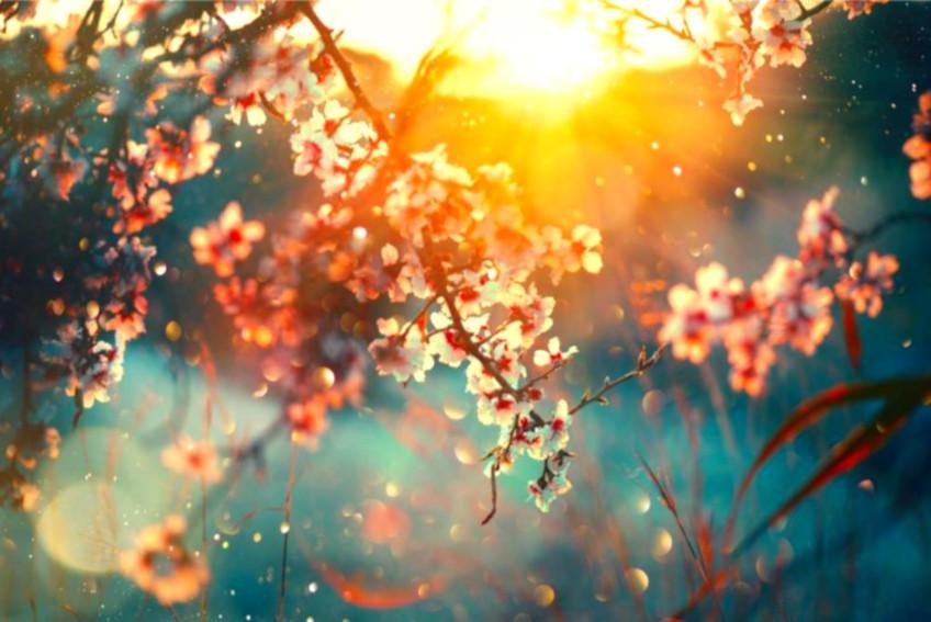 Primavera, Resurrección